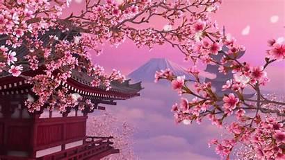 Blossom Cherry Aesthetic Wallpapers Anime 1080p Sakura