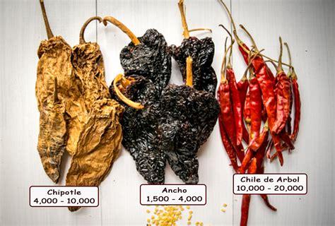 are ancho chiles chili pepper 101 mexican please