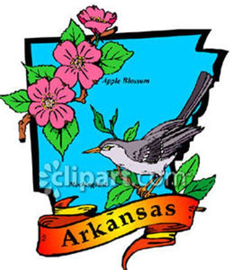 Cost Of Missouri Boating License by Map Of Arkansas With State Bird And Flower Royalty Free