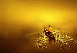 Feel the Yellow - Vibrant Examples of Color Yellow in ...