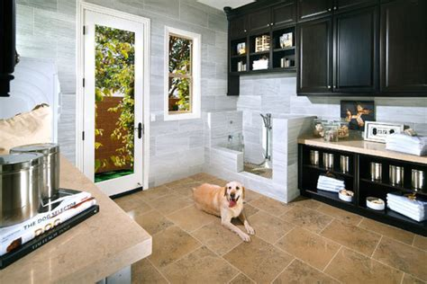 8 Tips for Installing a Dog Washing Station