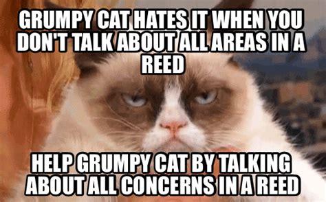 Make Your Own Grumpy Cat Meme - grumpy cat animated