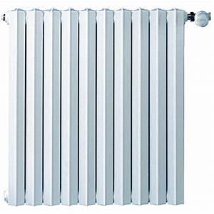 Radiateur En Fonte Electrique : radiateur inertie fonte radiateur inertie fonte noirot ~ Premium-room.com Idées de Décoration