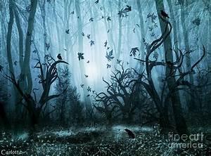 Haunted Forest Digital Art by Carlotta Ceawlin