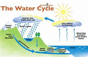 The Water Cycle  Chart