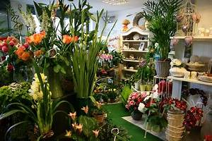 Livraison Fleurs à Domicile : livraison de fleurs domicile par un fleuriste de saint ~ Dailycaller-alerts.com Idées de Décoration