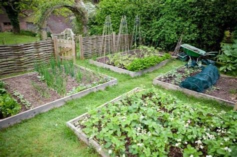 Self Sufficient Backyard - 50 resources to help you become more self sufficient