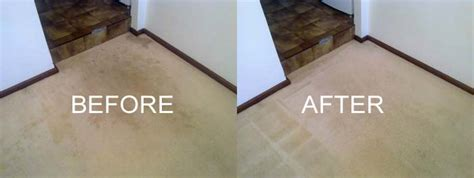 Dry Carpet Cleaning Perth Toxic Carpet Padding Best Way To Clean Your Car Carpets How Use Five Star Cleaner City Block Tile Roll Out For Wedding With A Steam Cleaning Chicago Il Thin Runners