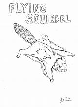 Coloring Adair Trapping Nuisance Animal Squirrel Flying Neo sketch template