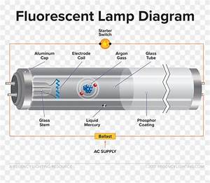 What Is Fluorescent Lighting A Diagram Of How A