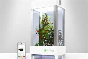 niwa armoire hydroponique connect 233 e pour faire pousser 224 l int 233 rieur aruco