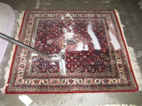 how to clean area rugs picture 3 of 48 how to clean area rug