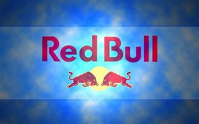 Bull Wallpapers Backgrounds Drink