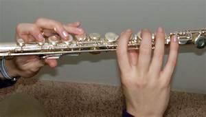 Modern Flute Diagram