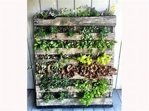 Mur Végétal En Palette : mur vegetal exterieur en palette sofag ~ Melissatoandfro.com Idées de Décoration