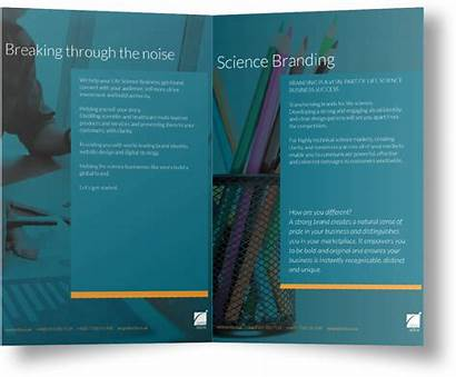 Brochure Creative Check