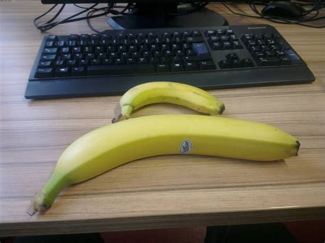 largest banana ive  jpegy