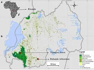 Location Of Rwanda In Africa  A   Map Of Rwandan Forests