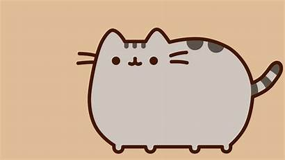 Pusheen Computer Cat Character March Result Walpaper