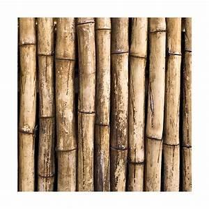 Bambou Brise Vue : brise vue bambou ~ Premium-room.com Idées de Décoration