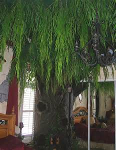 cat tree that looks like a tree 301 moved permanently