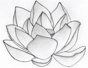 Lotus Flower art - Flower HD Wallpapers, Images, PIctures ...