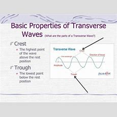 Ppt  What Are Waves? Powerpoint Presentation Id2481459