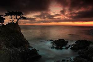 The Lone Cypress Observes A Pebble Beach Sunset Photograph