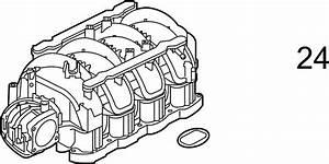 Infiniti Qx56 Engine Intake Manifold Gasket  Exhaust