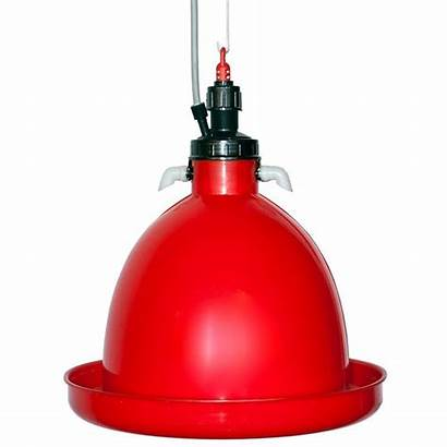 Drinker Poultry Bell Automatic Broiler Drinkers Chickens