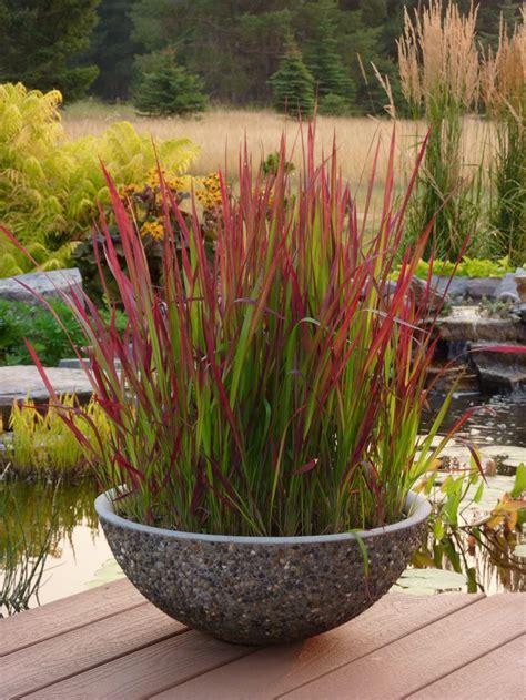 best 20 japanese gardens ideas on japanese
