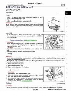 Download Nissan Qashqai J11 Model Series Esm 2016my