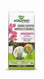 Rempoter Une Orchidee : rempoter les orchidees agrofino ~ Mglfilm.com Idées de Décoration