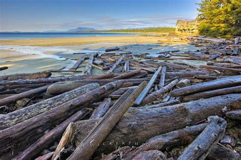 wickaninnish beach driftwood picture photo information