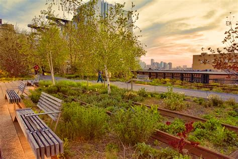 Secrets of the High Line - My NY Tours