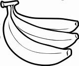 Banana Clipart Drawing Coloring Bananas Pages Sketch Fruit Printable Easy Drawings Crafts Azcoloring Paintingvalley Webstockreview sketch template