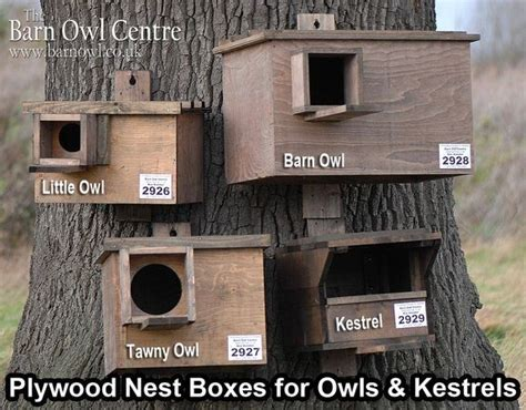 owl box plans woodworking projects plans