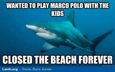 Marco Polo Meme - to erferneter err benerd