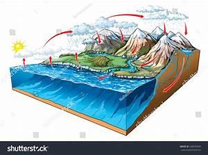 Water Circulation On Earth  Stock Vector Illustration 246630049   Shutterstock