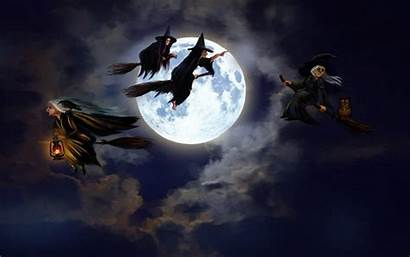 Witches Witch Happy Halloween Wallpapers Sky Christmas