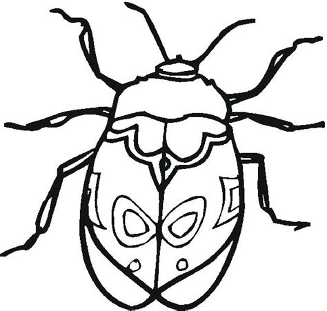 insects coloring pages printable httpprocoloringcom