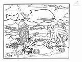 Squid Coloring Pages Ocean Printable Animals Colouring Fish Animal Cartoon Giant Whale Sea Viewed Kb Getcoloringpages Adult 1001coloringpages Octopus Baby sketch template