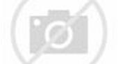 【三億分手費】媒爆洗米華終與Mandy Lieu分手 兩人育有兩女一仔 | MyBB