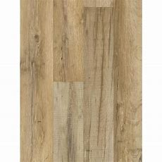 Shop Style Selections Tavern Oak 759in W X 423ft L