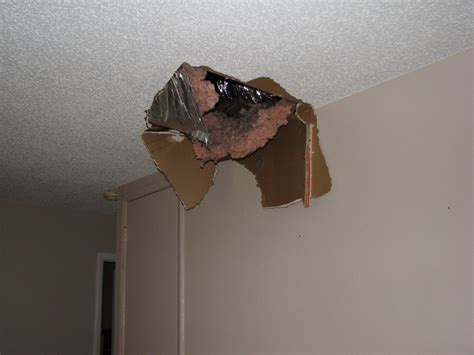 Barry The Cable Guy Stepped Thru My Popcorn Ceiling In