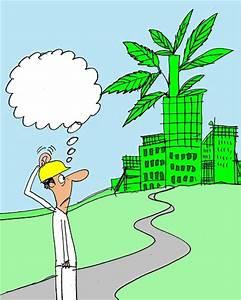 Pics For > Funny Plant Cartoon