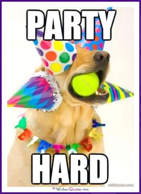 Funny Party Memes - 450 best happy birthday images on pinterest invitations birthdays and cards