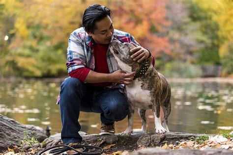adore bull dogs honor pit bull awareness day saturday