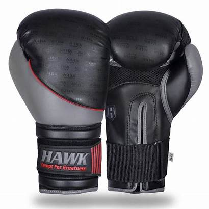 Boxing Gloves Sparring Hawk Coloring Pages Training