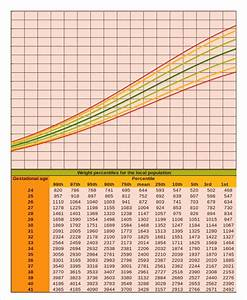 Baby Growth Chart Calculator 6 Free Excel Pdf